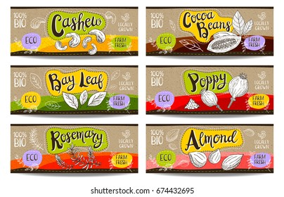 Set of colorful labels sketch style food spices cardboard texture horizontal. Cashew poppy cocoa beans almond, bay leaf, rosemary. Vegetables, farm fresh, locally grown. Hand drawn vector illustration
