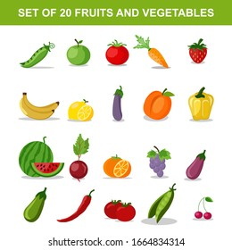 Set of colorful organic designs with a collection of fresh fresh fruit. Vector illustration.