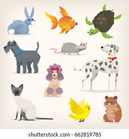 Set of colorful pets. Different species and kinds of breeds of dogs and cats. Isolated vector illustrations