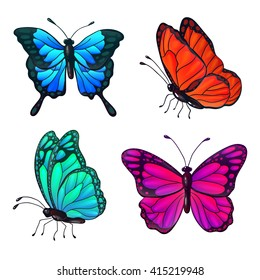 Set of Colorful Realistic Butterflies. Vector illustration