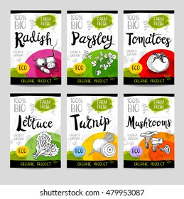 Set of colorful stickers in sketch style, food, spices, white background. Radish, parsley, tomatoes, lettuce, turnip, mushrooms. Vegetables, farm fresh, locally grown. Hand drawn vector illustration.