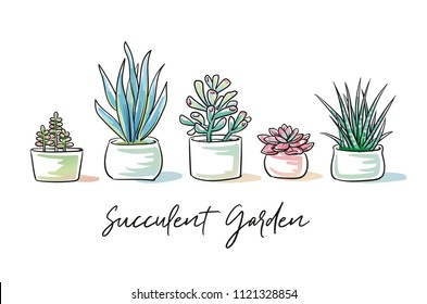 Set of colorful succulent plants in garden pottery with hand written font. Hand drawn doodle sketch vector illustration.