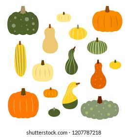 Set of colorful vector autumn gourds in various shapes and sizes.