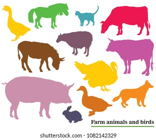 Set of colorful vector farm animals and birds ( Dog, Cat, Cow, Turkey, Donkey, Pig, Rabbit, Goose,  Sheep, Duck, Bull) silhouettes in black color isolated on white background