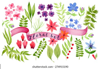 Set of colorful watercolor flowers. vector illustration