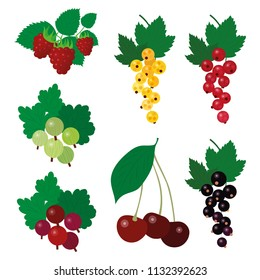Set of colourful simple vector garden berries