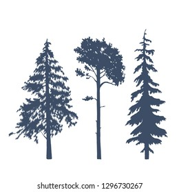Set of coniferous trees silhouettes. Vector illustration of pines, spruces and firs.