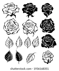 Set of contour, black, silhouette, artistically drawn flowers, buds and leaves of roses, on white background.