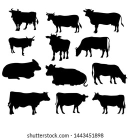 set of cow.cow silhouettes set isolated on white background vector