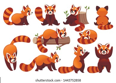 Set of cute adorable red panda in different poses cartoon design animal character flat vector style illustration on white background