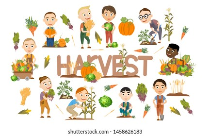 A set of cute boys harvest vegetables and cereals. Harvest cabbage, potatoes, carrots, beets, pumpkins, corn and wheat. Collection of people doing farming job. Vector illustration of kids