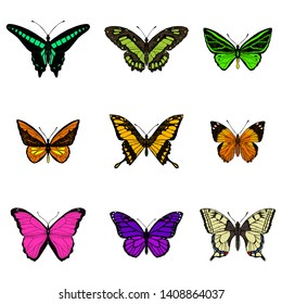 Set of cute butterflies. Vector cartoon illustrations. Isolated objects on a white background. Hand-drawn style.