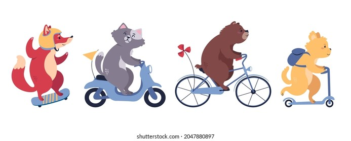 A set of cute cartoon animals riding different means of trasportations. Includes a fox on a skate, a cat on a motorbike, a bear on a bicycle, and a dog on a kick scooter. Flat style vector