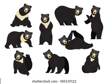 Set of cute cartoon black bear in modern flat style. Animal character design isolate background.