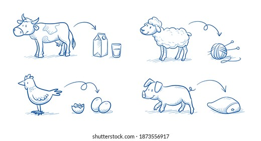 Set of cute cartoon Farm animals (cow, sheep, chicken, pig) with the products we get from them (meat, milk, wool, eggs, feathers, leather). Hand drawn doodle vector illustration.