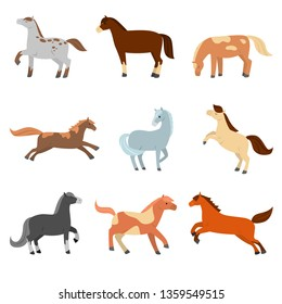 A set of cute cartoon horses of different configuration, color and coloring.