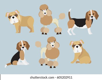 Set of cute cartoon Poodle, Bulldog and Beagle dog in modern flat style. Animal character design isolate background.