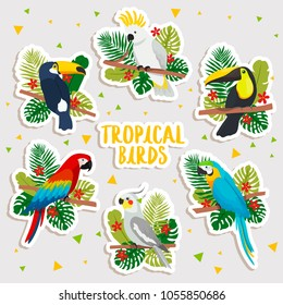 set of cute cartoon tropical birds stickers. illustration of cartoon cockatoo, toucans and parrot with tropical leaves. cute tropical birds stickers set