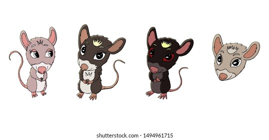set of cute colored rats for new year 2020.  Cute rat character
