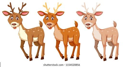 Set of cute deers  illustration