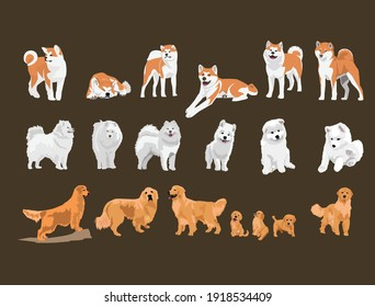 set of cute dogs and puppies vector illustration