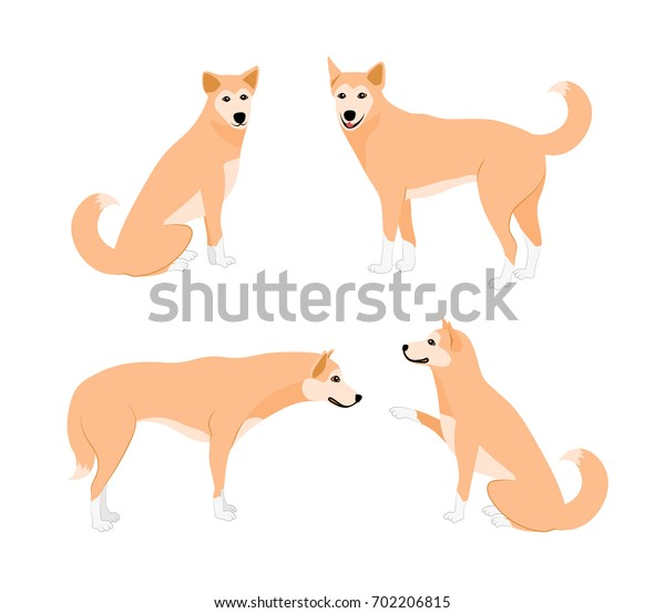 Set of cute dogs. Vector illustration isolated on white background. Dog icons collection for pet clinic and pet shop.