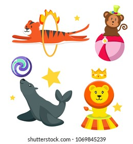 Set cute, funny circus animals. Seal with ball, tiger with crown, monkey in funny hat, tiger hangs through the flame. Entertainment, sight, rest Modern vector flat image isolated on white background