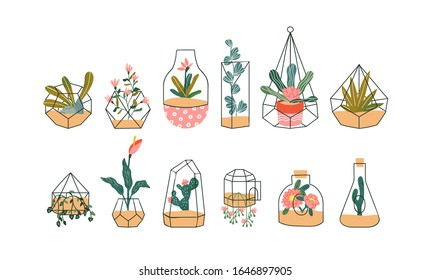 Set of cute glass terrarium with exotic tropical house plant on isolated white background. Hand drawn spring plants include cactus, rose and flower drawings.