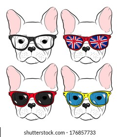 set of cute muzzle French Bulldog in glasses