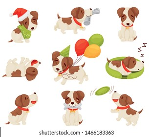 Set of cute puppy. Vector illustration on white background.