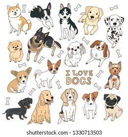 Set of cute vector illustrations on the theme of pets of dogs of different breeds hand-drawing on a white background with an inscription and bones