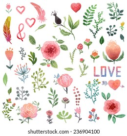 Set of cute watercolor hand-drawn nature clip-art, isolated. Wedding, birthday, celebration card elements.