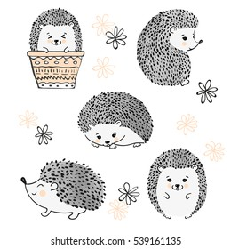 Set of cute watercolor hedgehogs isolate on white. Vector illustration.