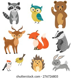 Set of cute woodland animals isolated on white background.