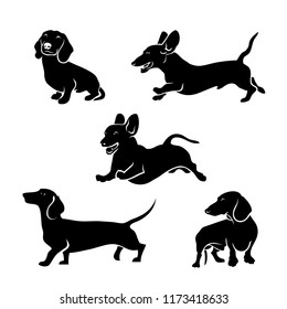 Set of Dachshund dog silhouettes - isolated vector illustration