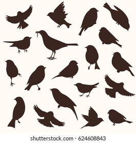 Set of decorative bird silhouettes. Vector illustration. Birds flying and sitting
