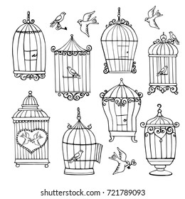 A set of decorative cells for birds painted in hand. Doodle elements for creativity and design