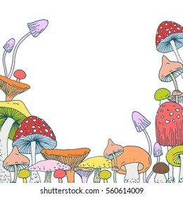 Set of decorative Forest mushrooms - vector hand drawn sketch. Collection of different mushrooms with roots, real edible and poisonous boletus.  Decorative frame design made with clipping mask