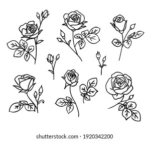 Set of decorative fresh blossoming rose silhouette with leaves isolated on white background. Hand drawn outline flower icon. Vector stock illustration