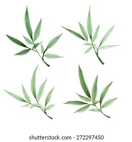 Set of decorative green watercolor branches. Hand drawn bamboo twigs with leaves. Stylized elements on white background.