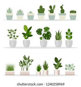 Set of decorative houseplants. Plants and nature homemade flowers in pot interior decoration in flat cartoon style. Vector illustration