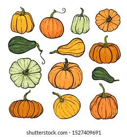 Set of decorative orange and green pumpkins. Hand drawn sketch vector autumn illustration. Thanksgiving Day, halloween Holiday background. Harvest