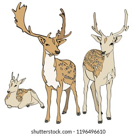 Set of Deers Drawing vector isolated on background