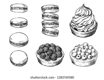 Set of delicious hand drawn creamy biscuit, french macaroons and tarts with berries. Engraving style pen pencil vintage vector lineart illustration on white background. Collection of sweet desserts.