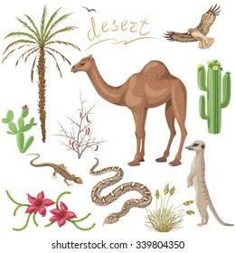 desert animals images stock photos vectors shutterstock