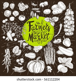 Set design template food, spice, sketch style, cardboard. Vegetables. Farmer market. Lettering, calligraphy logo. Hand drawn vector illustration