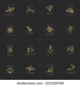 set design templates golden logo and emblems - herbs and spices. Different spices icon. Logos in trendy linear style isolated on white background
