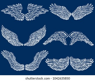 Set of the different angels wings
