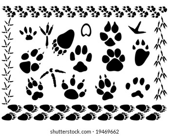 set of different animal and bird footsteps vector illustration