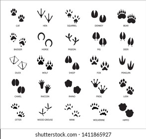 Set of different animals and birds silhouette tracks with description isolated on white background flat vector illustration